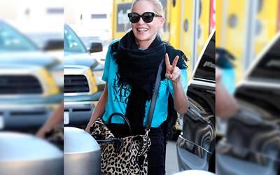 Sharon Stone Bloqueada En Un Sitio De Citas Diario De